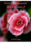 The Flowers 2 - Flowers - Amazing Pictures by Michael Taggart Photography