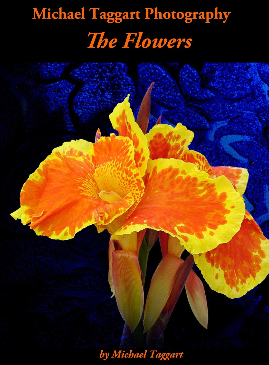 The Flowers cover - Flowers - Amazing Pictures by Michael Taggart Photography